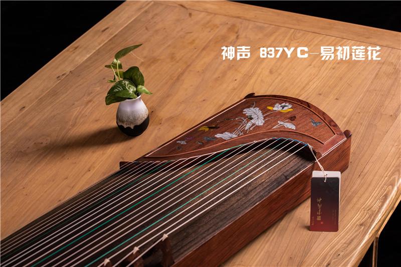 有没有不贵音色也很好的古筝呢?